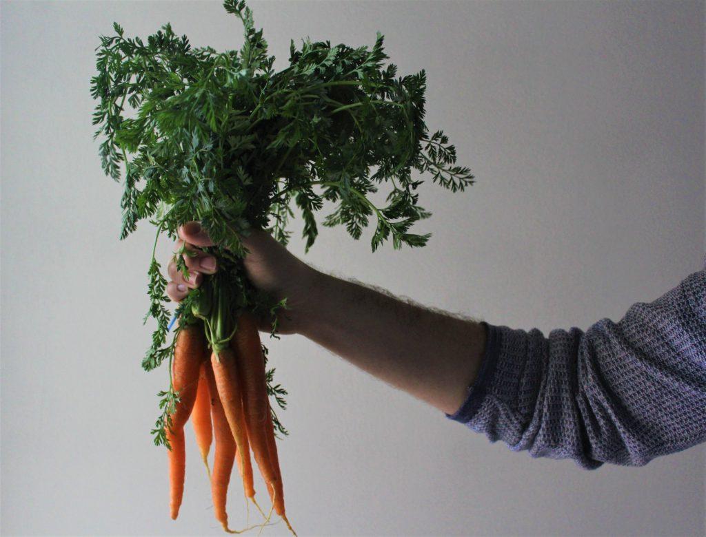 ciuffo di carote