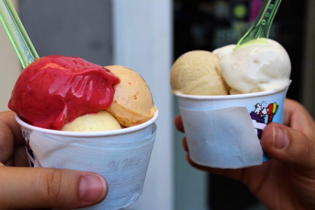 gelateria della passera a firenze